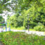 猛暑の【給田水無公園】で、自然観察。でも暑すぎるから、よい子はあまりマネしないでね〜。
